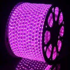 Ruban LED 220V Violet