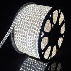 Ruban LED 220V Blanc Froid