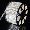 Ruban à LED 220V Blanc Froid