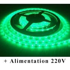 Kit Ruban LED Vert 12V-230V