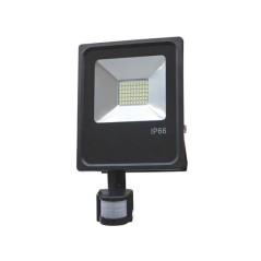 Projecteur avec détecteur 30W