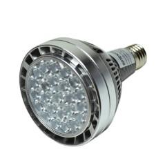 Ampoule E27 PAR30 30W