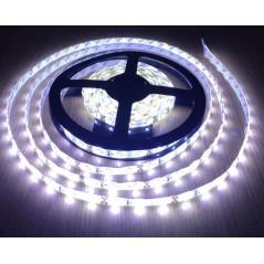 Ruban LED 24V Blanc Froid