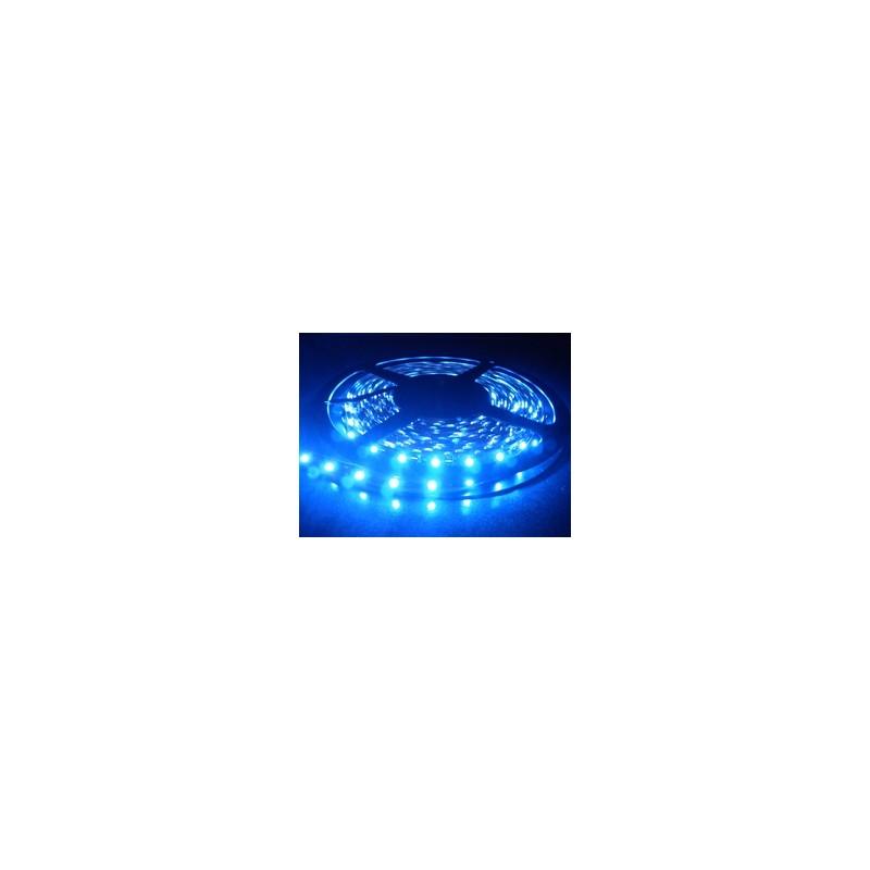 Kit Ruban LED Bleu 12V-230V