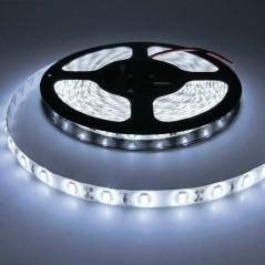 Ruban LED 12V Blanc Froid