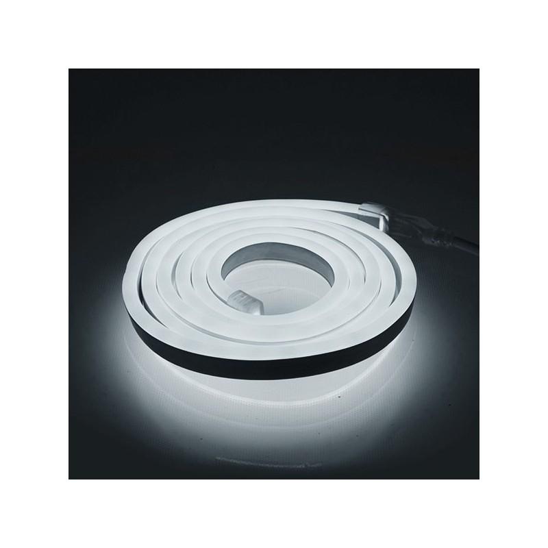 Néon flexible LED Blanc Froid