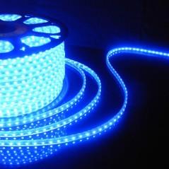 Ruban LED 220V Bleu