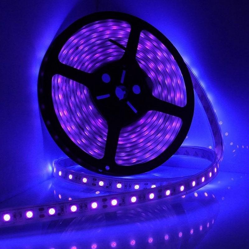 Ruban à LED 60leds/m violet IP65 qualité Pro, ruban led viotet pas ...